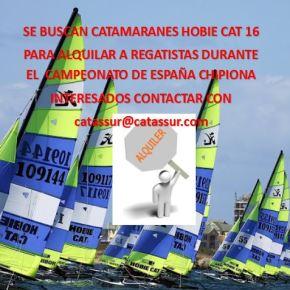 Patrones buscan Hobie Cat para alquilar para el Cpto deEspaña